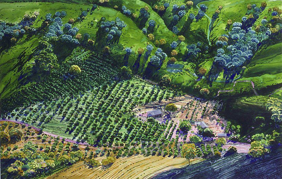 Woody Payne Aerial Landscape Painting